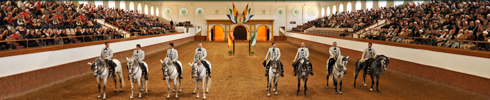 Patronos Fundación Real Escuela Andaluza Del Arte Ecuestre