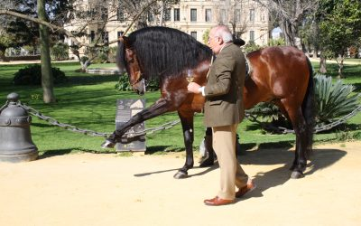 The Royal School and González Byass combine horses and wine in a new experience