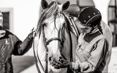 Technical Equestrian Courses Schedule for 2021