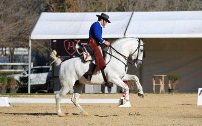 Celebración de la Copa ANCCE de equitación de trabajo